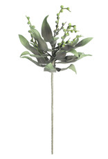 Botanica 2194