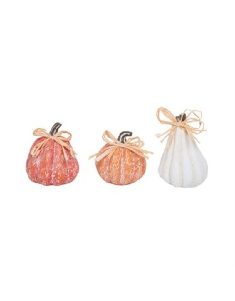 White washed pumpkin