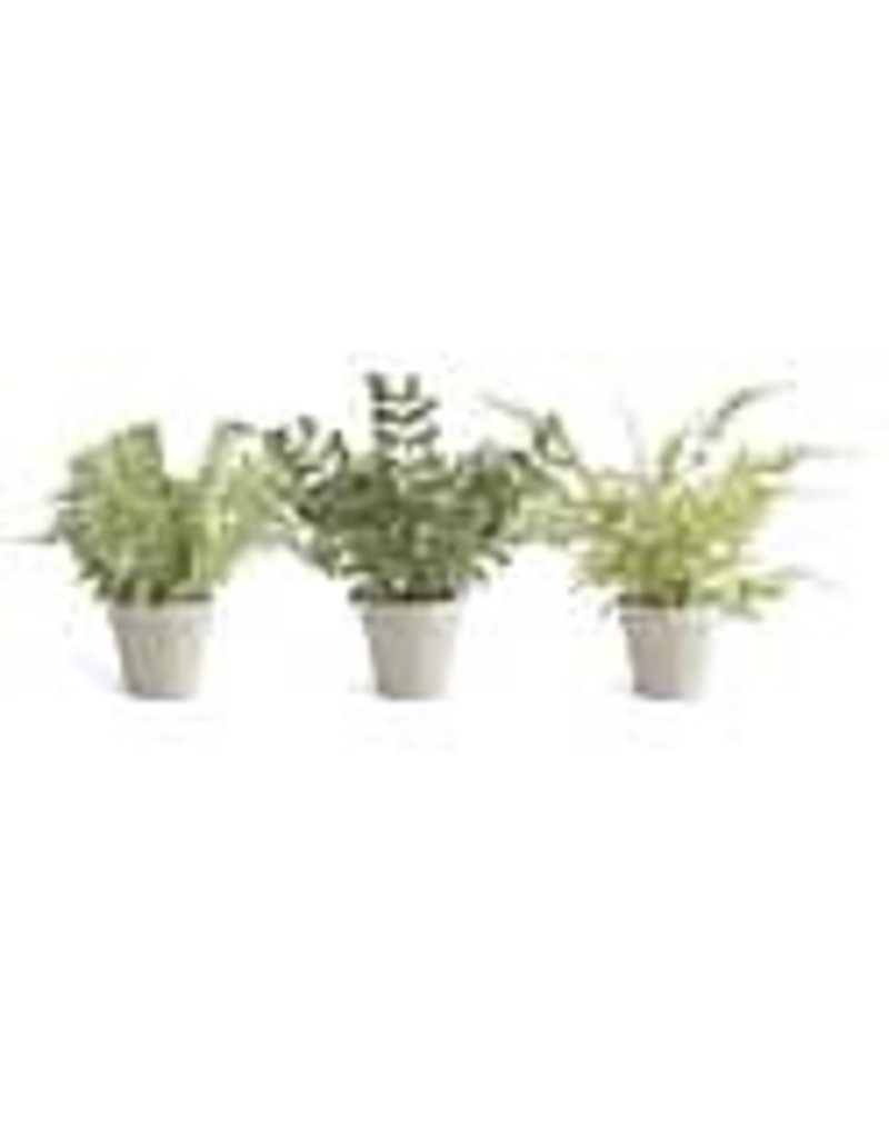 Real touch fern in grey pot