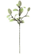 Botanica 2065