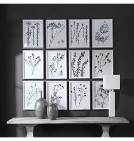 """UTTERMOST Contemporary Botanical Framed (individual) 16""""W x 22"""" H x 2""""D  33713"""