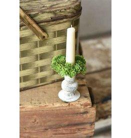 "Mini Stonecrop Candle Ring 3"" RA7163"