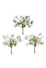 "20"" herb bundle f4002145"