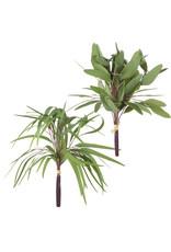 17.5 eucalyptus bundle f4102215