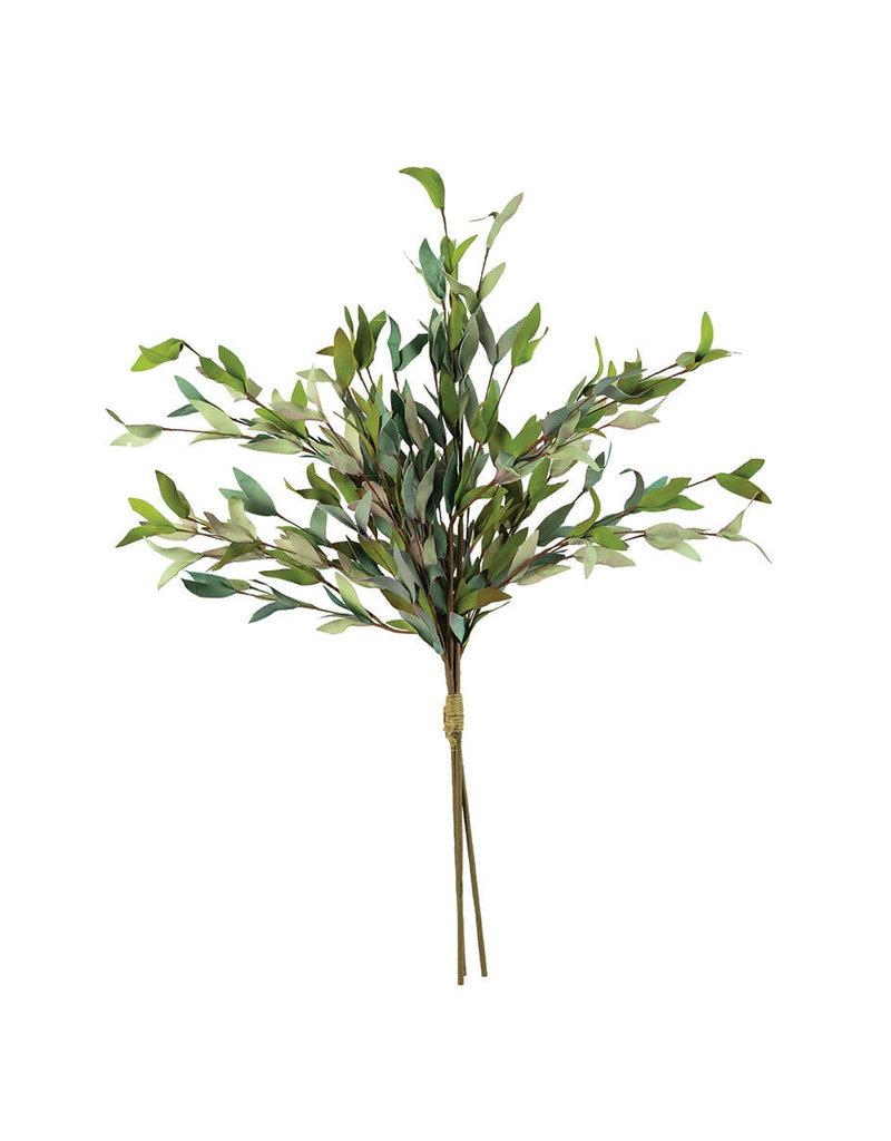 Botanica 2397 csl2397