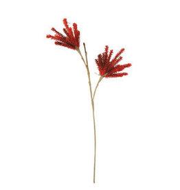 Botanical 3163