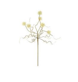 Botanical 2443