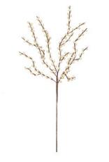 Botanical 2290