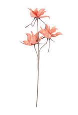 Botanical 2345