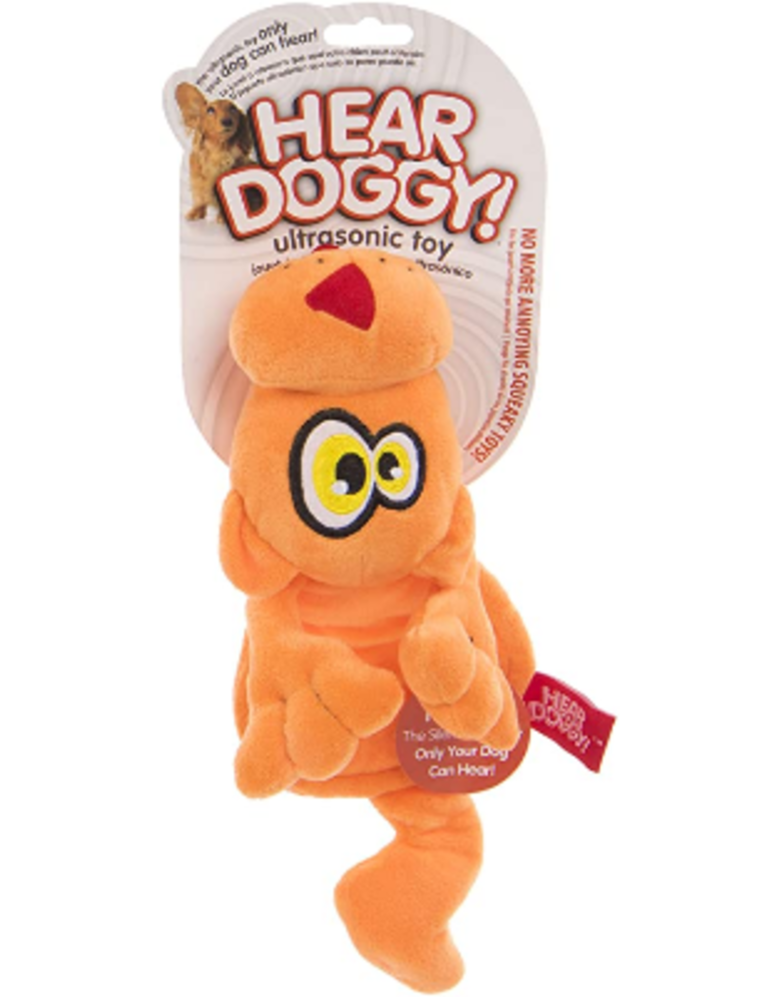 HearDoggy: Flattie Orange Cat DC