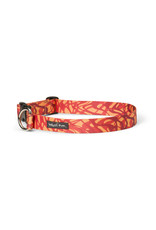 West Paw Designs Westpaw: Outings™ Collar Medium Zebra Fire