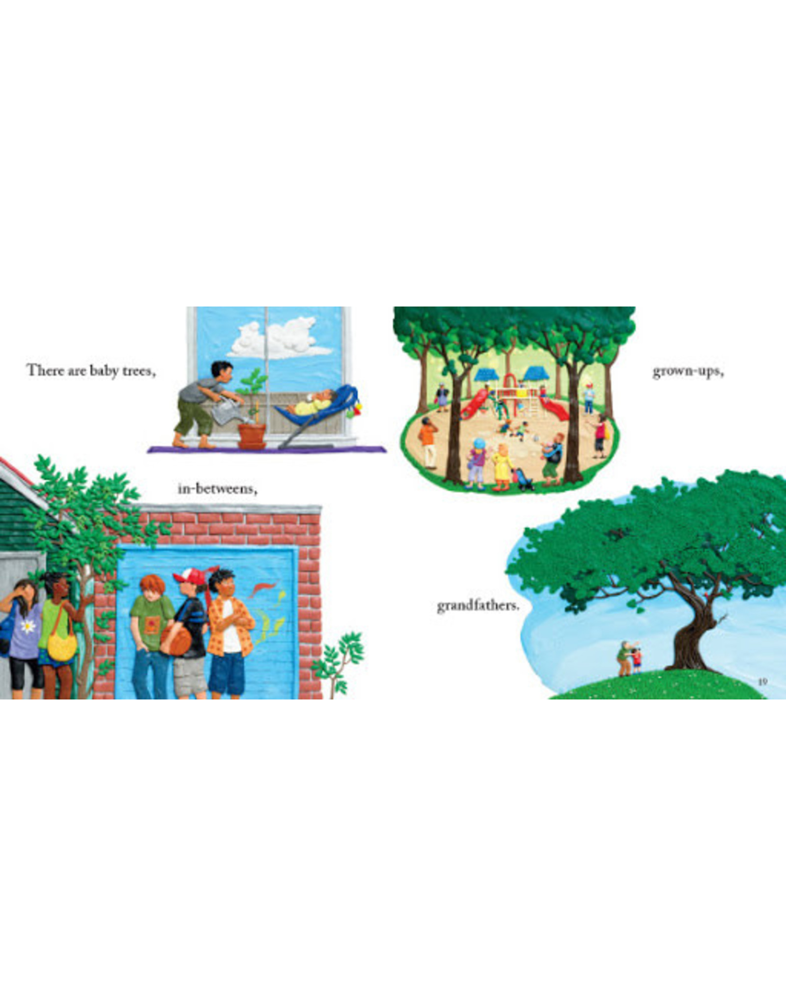 Scholastic Canada Picture a Tree (HC)