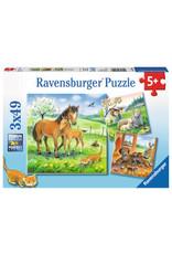 Ravensburger 3x49 pcs. Cuddle Time Puzzle