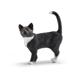 Everest Cat, Standing