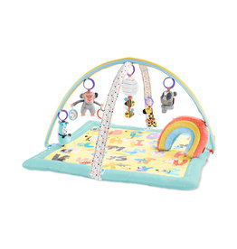 Skip Hop Activity Gym, ABC Me
