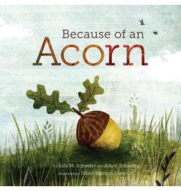 Raincoast Books Because of an Acorn