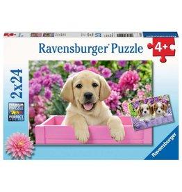 Ravensburger 2x24 pcs. Me And My Pal Puzzle