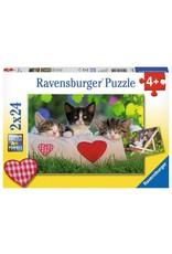 Ravensburger 2x24 pcs. Sleepy Kittens Puzzle