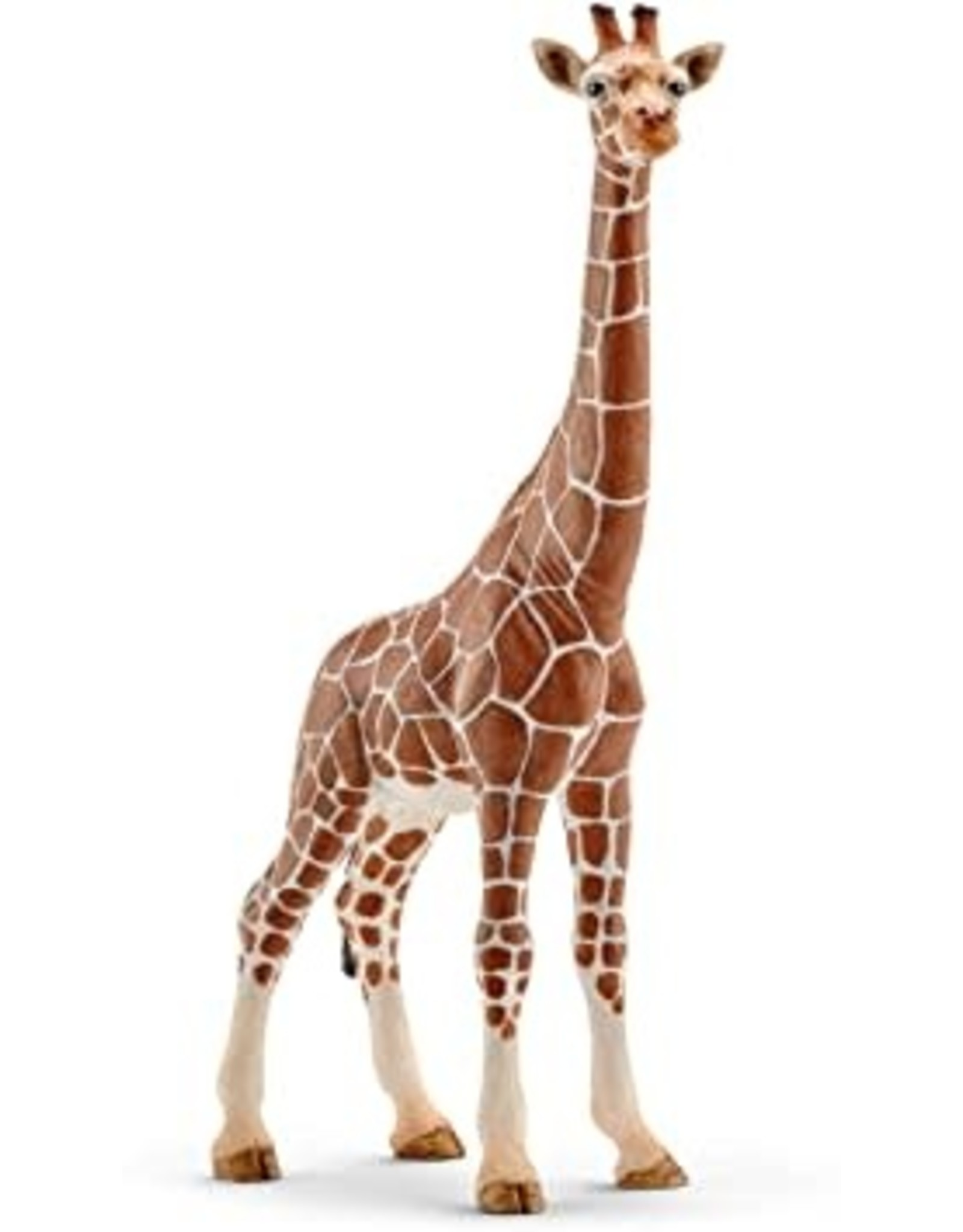 Schleich Giraffe, Female