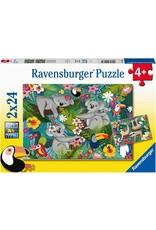 Ravensburger 2x24 pcs. Koalas And Sloths Puzzle