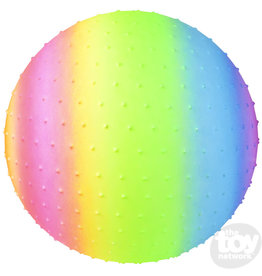 "The Toy Network 18"" Rainbow Knobby Ball"