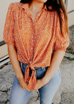 Free People Celia Blouse