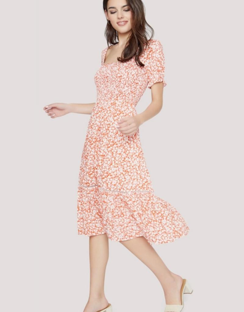 Sweet Summer Daze Dress