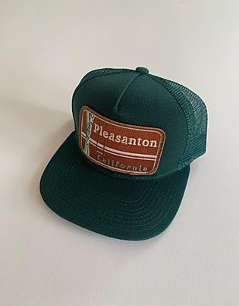 Venture Pleasanton Townie Trucker