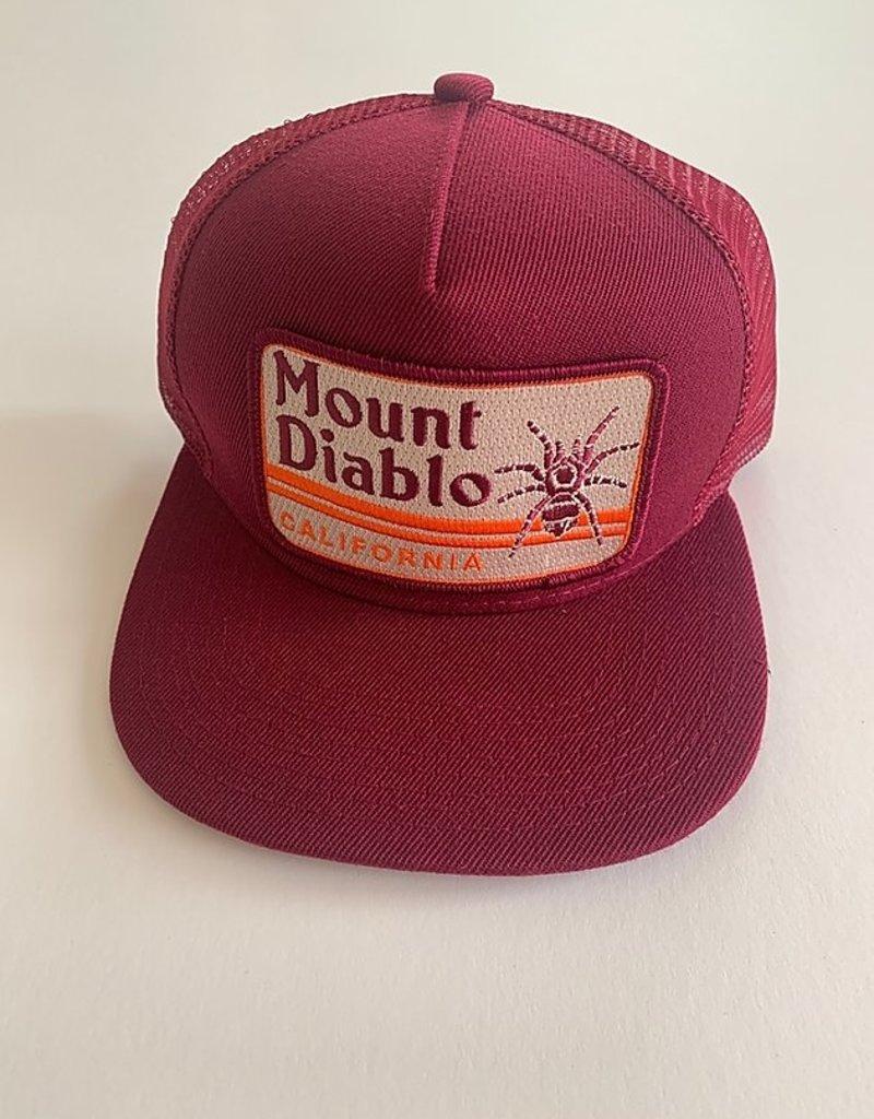 Venture Mount Diablo Townie Trucker