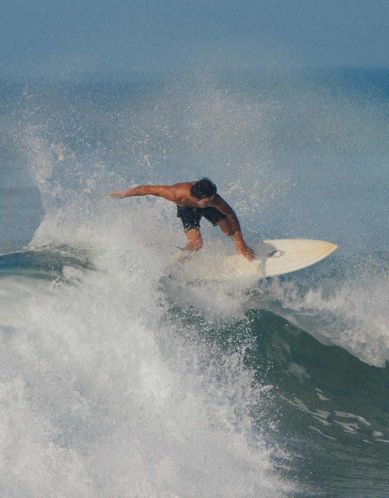 Mollusk Surf Shop Vacation Trunks