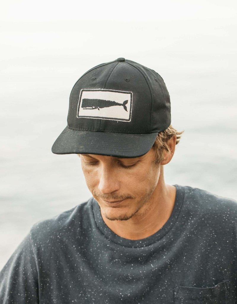 Mollusk Surf Shop Whale Patch Hat