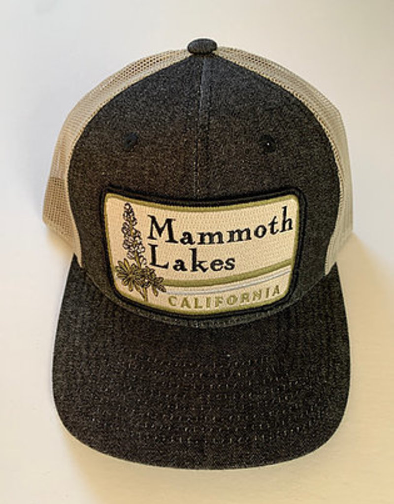 Venture Mammoth Lakes Townie Lo Pro Black