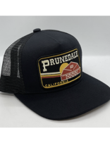 Venture Prunedale Black Townie Trucker