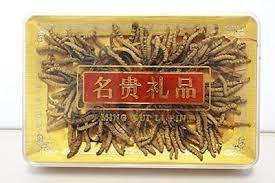 ASIAN BRANDS KF WHOLE CORDYCEPS 24 GM - Đông trùng hạ thảo nguyên con (ITEM #)