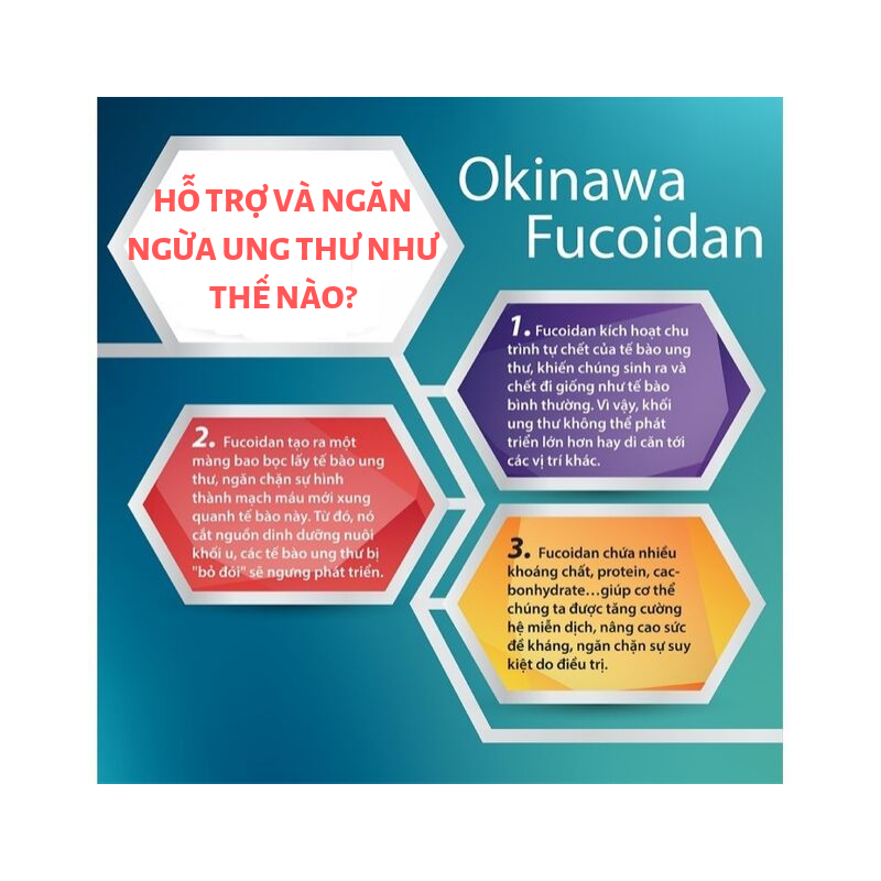 NATURE PURE NP JAPANESE FUCOIDAN 90 CAPSULES - TẢO NÂU FUCOIDAN NHẬT