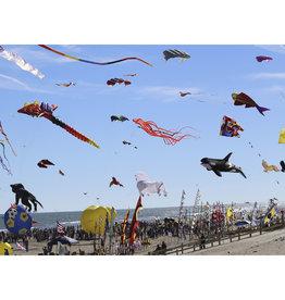 Big Dog Puzzles High Fling Kites (513pc)