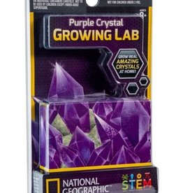 Purple Crystal Growing Lab