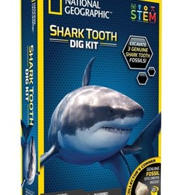 Shark Tooth Large Dig Kit