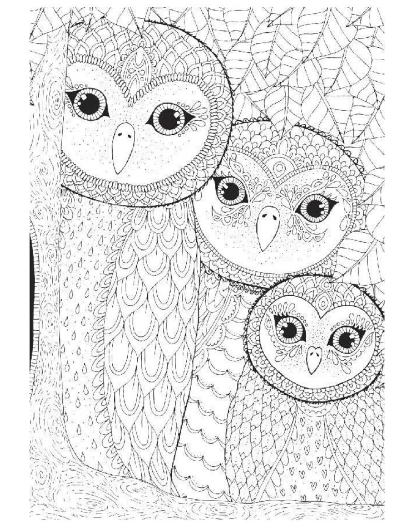 Anatolian Coloring Owls Family (260 pc)