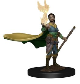 WizKids D&D Icons of the Realms (Premium Elf Female Druid)