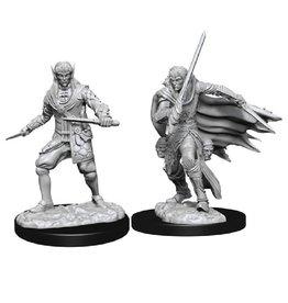 WizKids Pathfinder Mini (Male Elf Rogue)