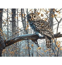 Paint Works Wise Owl (Expert)