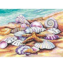 Paint Works Shells - Medium