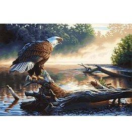 Paint Works Eagle Hunter