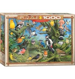 Eurographics Garden Birds (1000pc)