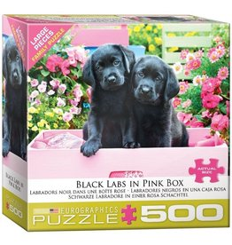Eurographics Black Labs in Pink Box (500pc)