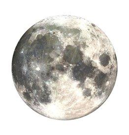 PopTop: The Moon