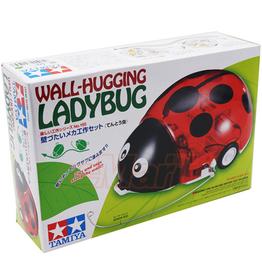 Wall-Hugging Ladybug