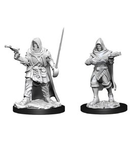 WizKids D&D Mini (Human Rogue Male)
