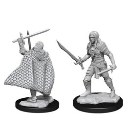 WizKids Elf Fighter Male